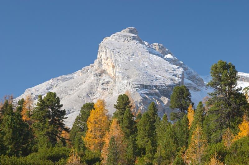 De herfst in de bergen van het Dolomiet stock afbeelding