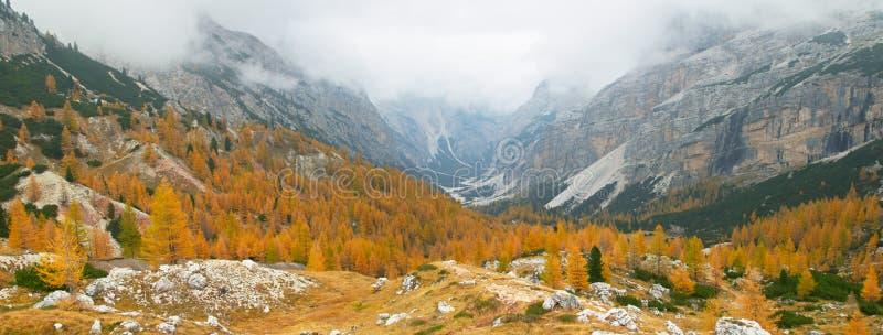 De herfst in de bergen van het Dolomiet royalty-vrije stock foto