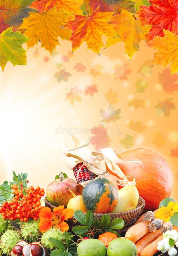 De herfst in de tuin royalty-vrije stock fotografie