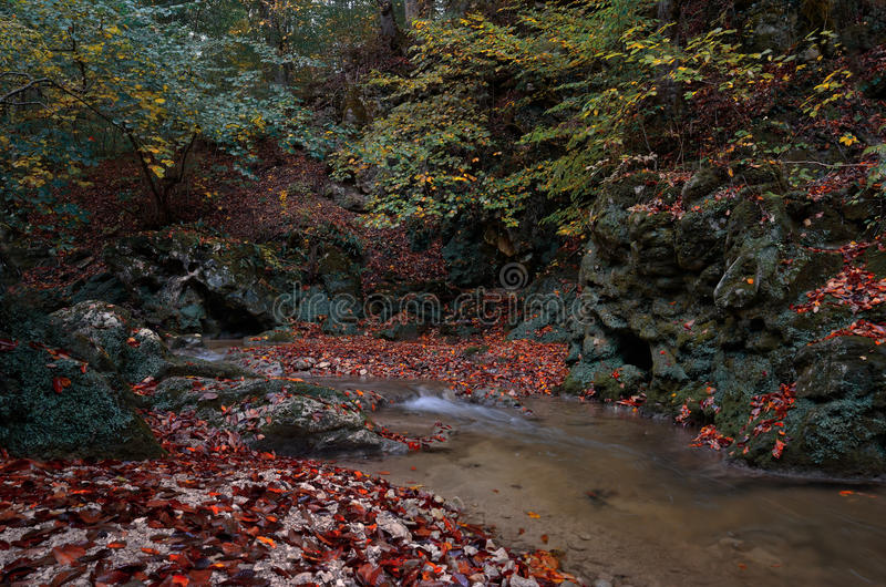 De herfst in de vallei van een bergstroom in de herfst stock afbeelding