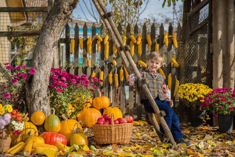 De herfst die appelen op het landbouwbedrijf verzamelen De kinderen verzamelen fruit in de mand Openlucht pret voor jonge geitjes royalty-vrije stock foto's
