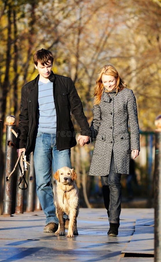 De herfst die met hond loopt royalty-vrije stock afbeeldingen