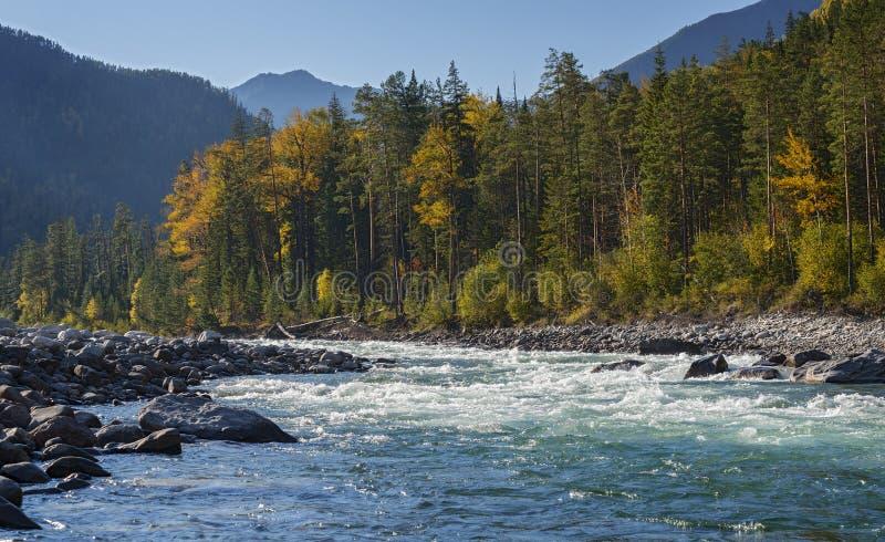 De herfst door de Rivier Kitoy stock fotografie