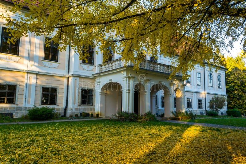 De herfst door Kasteel Jankovic royalty-vrije stock foto