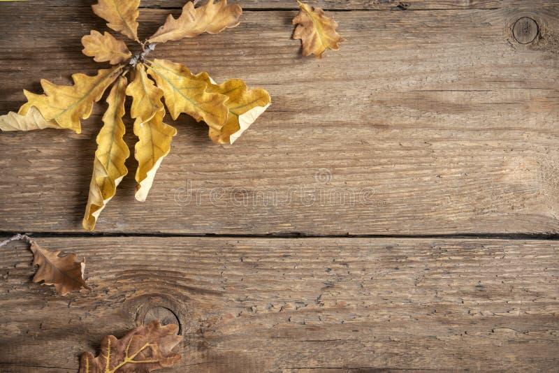 De herfst Droog bladeren op houten stock fotografie