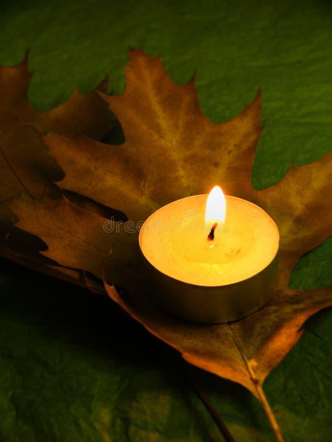 De herfst en harmonie stock foto