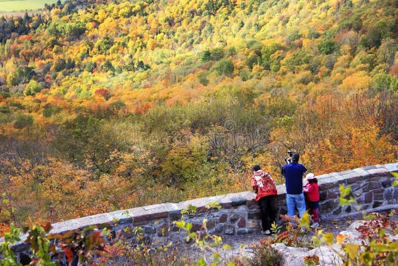 De herfst in Gatineau-Park stock foto's