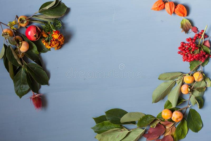 De herfst gele en Rode bladeren en vruchten op een grijze achtergrond royalty-vrije stock afbeeldingen