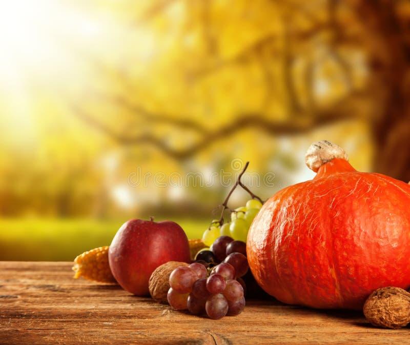 De herfst geoogste fruit en groente op hout stock foto