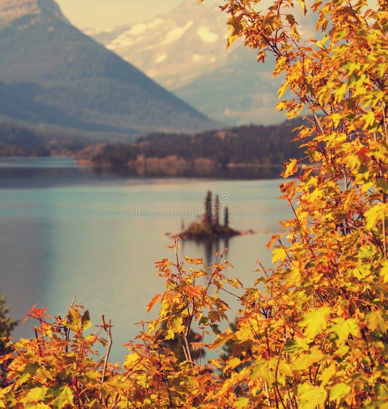 De herfst in Gletsjer stock afbeelding