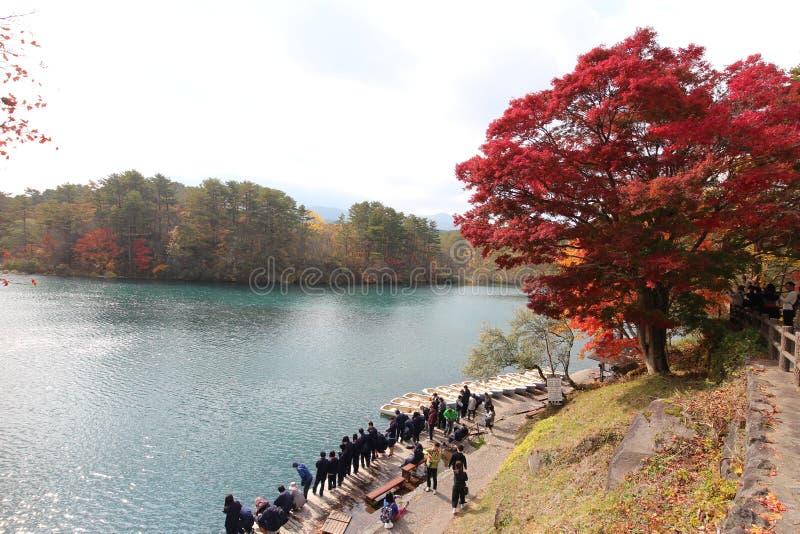 De herfst in goshikinuma stock afbeelding