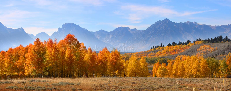 De herfst in Grote Tetons royalty-vrije stock fotografie