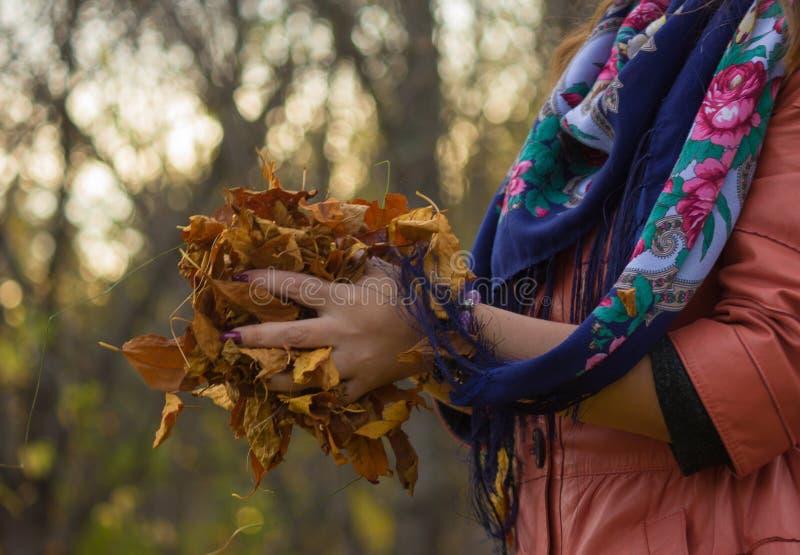 De herfst in de handen royalty-vrije stock fotografie
