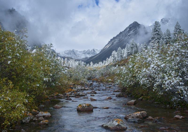 De herfst in het bovenleer bereikt van zun-Handagay rivier royalty-vrije stock foto