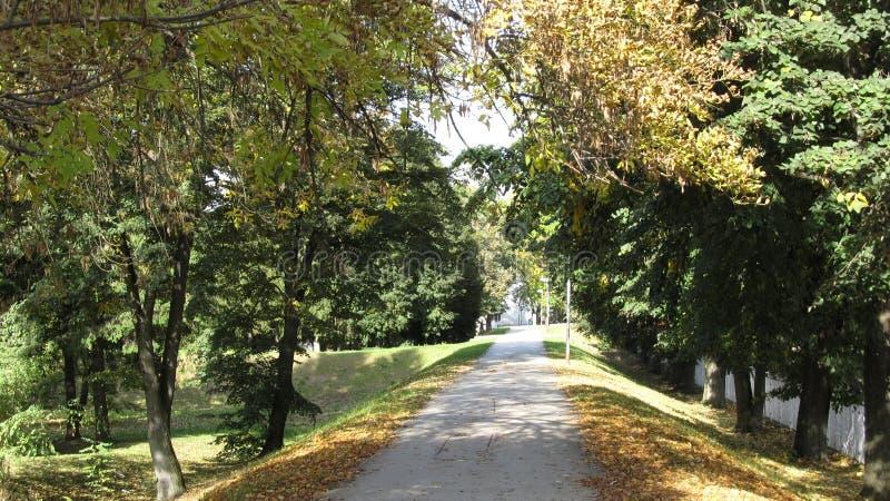 De herfst het lopen stock foto's