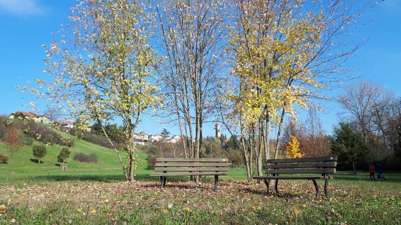 De herfst in het park royalty-vrije stock afbeelding