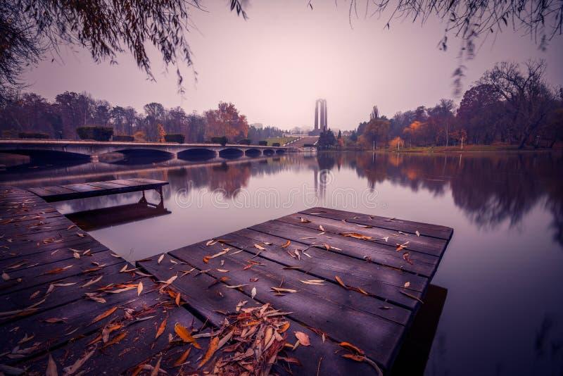 De herfst in het park dichtbij het meer met bladeren ter plaatse stock foto