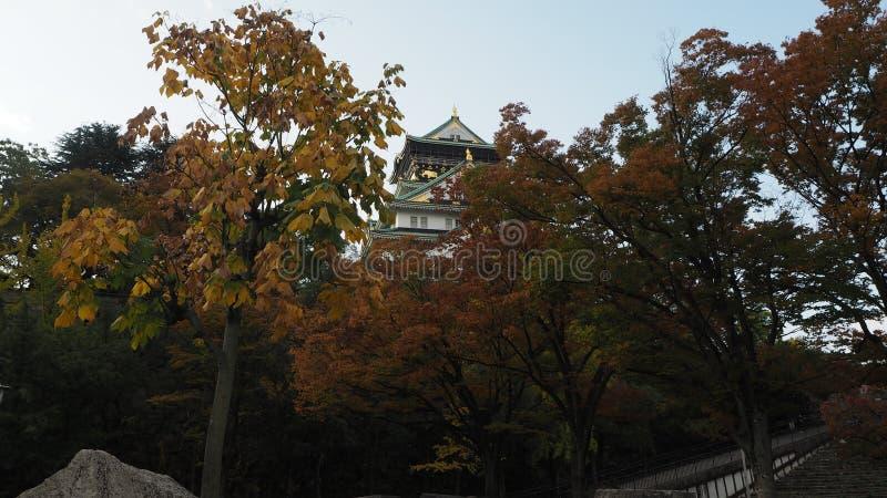 De herfst in Japan de kleurenverandering Osaka Castle stock foto