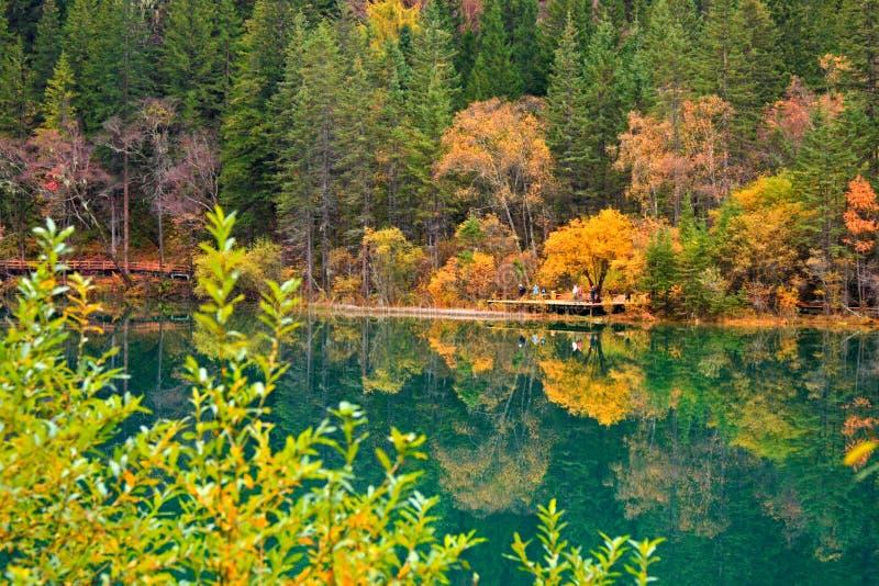 De herfst in Jiuzhaigou, Sichuan, China royalty-vrije stock afbeeldingen