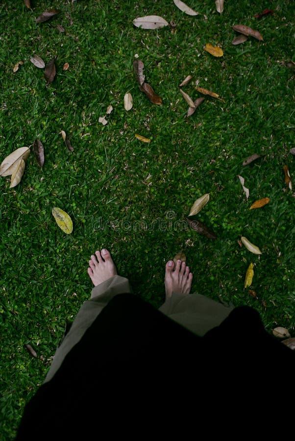 De herfst is klaar stock foto's