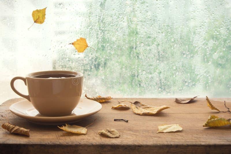 De herfst Kop thee stock foto