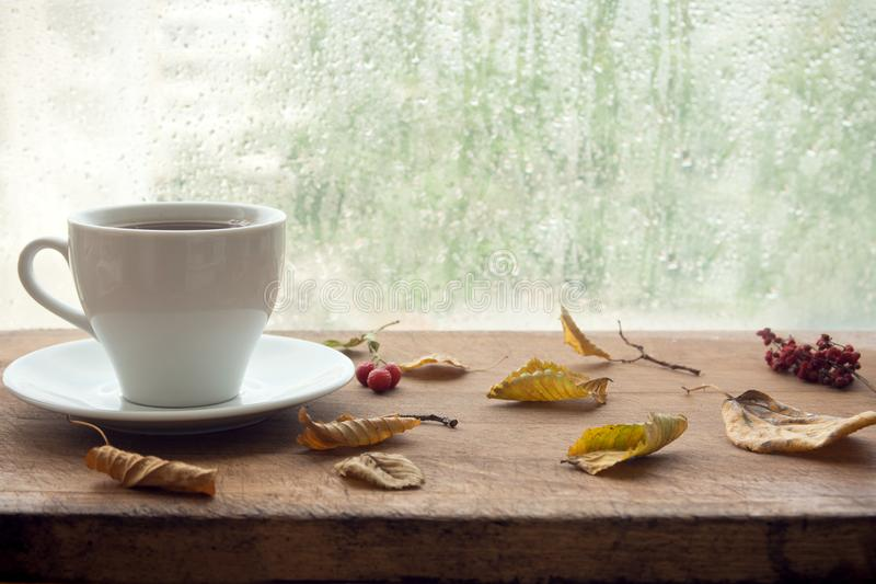De herfst Kop van koffie royalty-vrije stock afbeeldingen