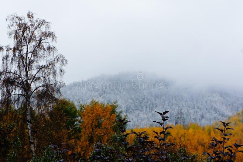 De herfst is laat royalty-vrije stock afbeeldingen