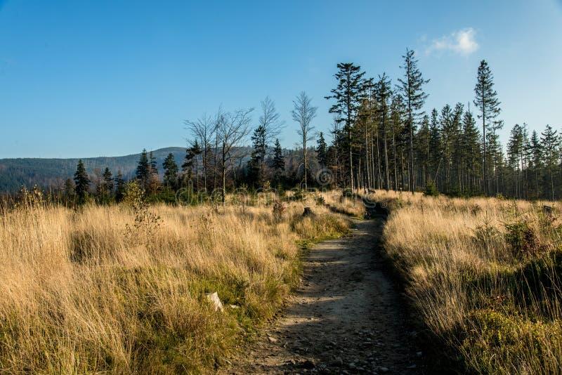 De herfst Landschap stock afbeeldingen