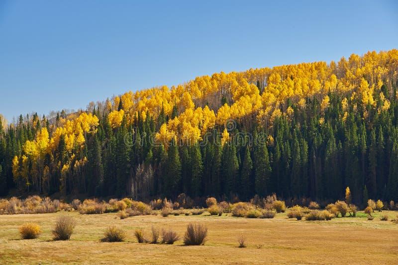 De herfst langs Pas Kebler royalty-vrije stock foto