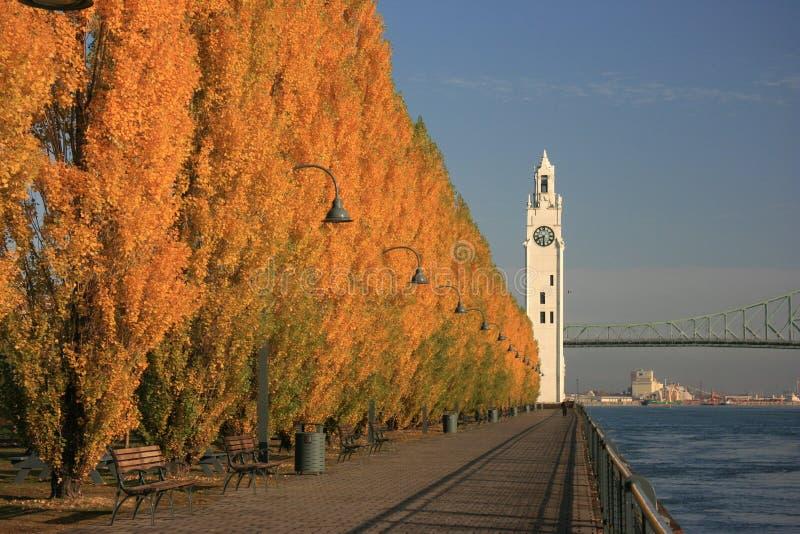 De herfst in Montreal stock foto