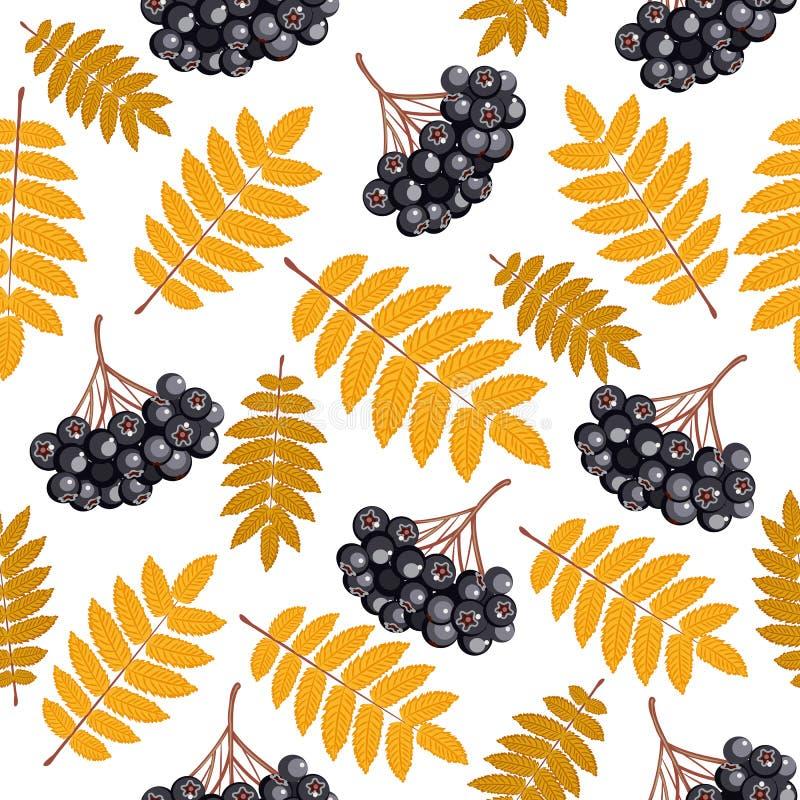 De herfst naadloos patroon met lijsterbes vector illustratie