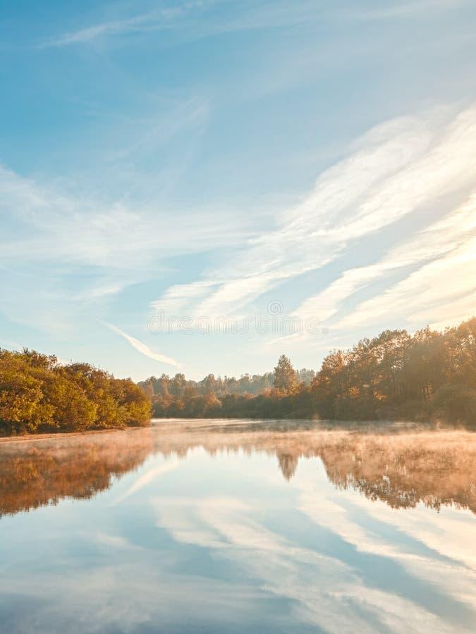 De herfst nevelige ochtend De scène van de de herfstdageraad Alden bomen op mistige riverbank De nevelige Stroom van de Herfst stock afbeeldingen