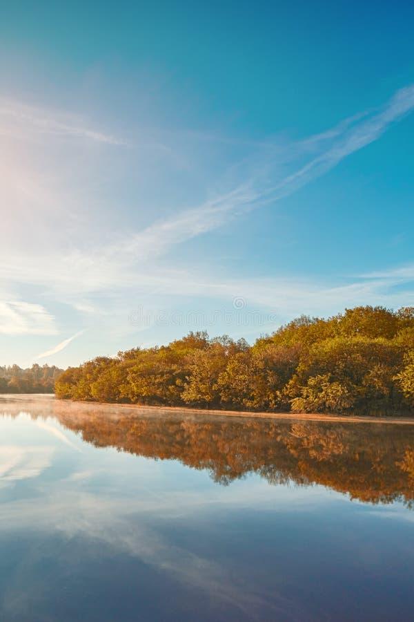 De herfst nevelige ochtend De scène van de de herfstdageraad Alden bomen op mistige riverbank De nevelige Stroom van de Herfst stock foto's
