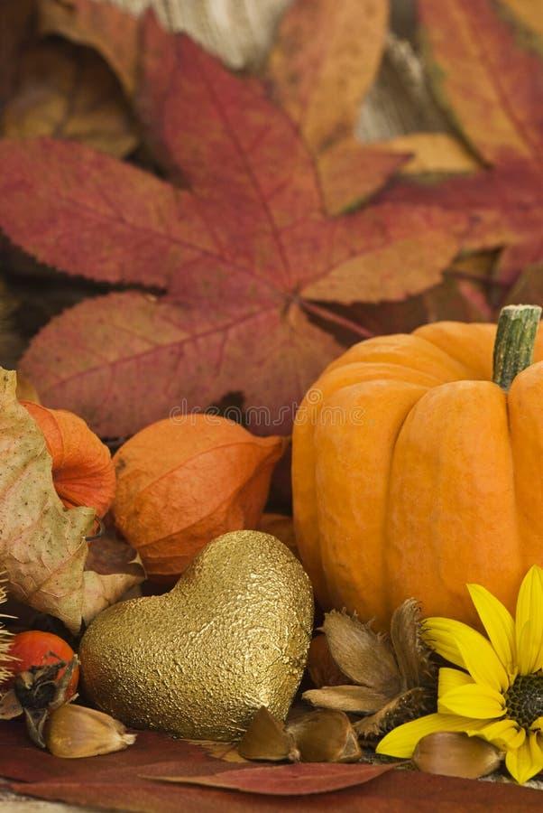 De herfst nog l ife stock fotografie