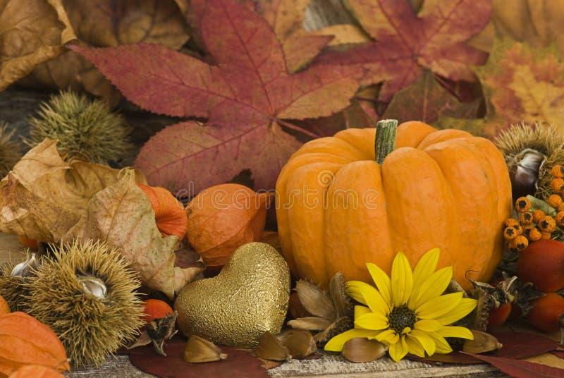 De herfst nog l ife stock afbeelding