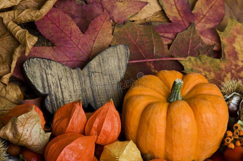 De herfst nog l ife royalty-vrije stock fotografie