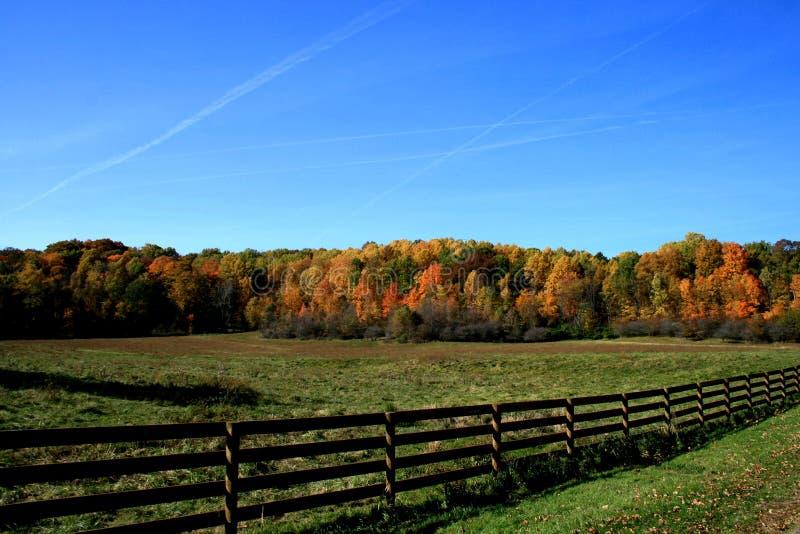 De herfst in Ohio stock foto