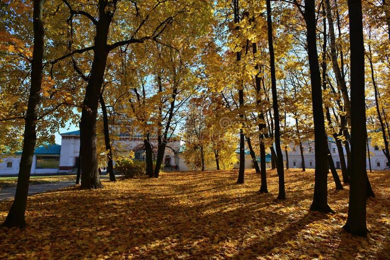 De herfst in oktober stock afbeelding