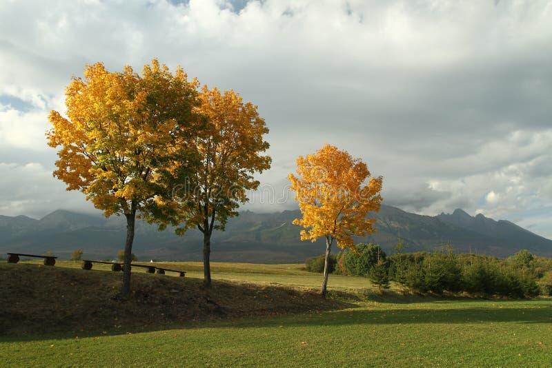 De herfst onder Hoge Tatras royalty-vrije stock afbeeldingen