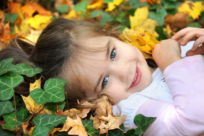 De herfst in Oostelijk Tennessee stock fotografie