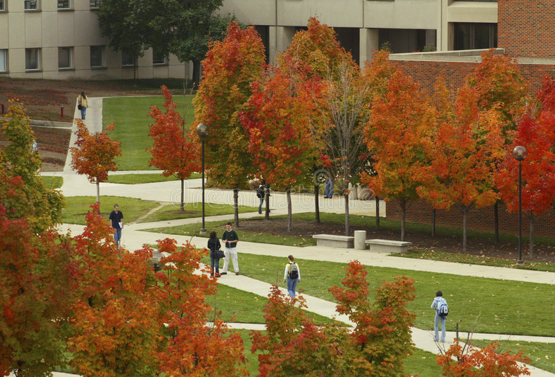 De herfst op Campus stock foto