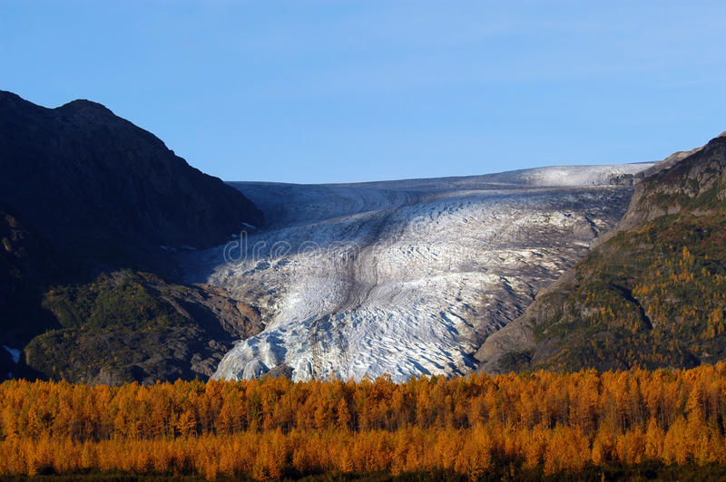 De herfst op de Gletsjer Seward Alaska van de Uitgang royalty-vrije stock foto