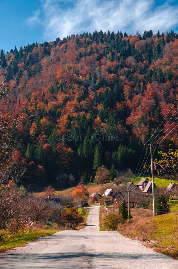 De herfst op een bergweg stock afbeeldingen