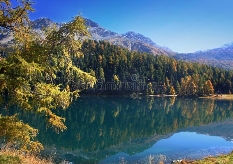 De herfst op het Zwitserse meer royalty-vrije stock foto