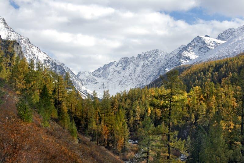De herfst op Kujguke. royalty-vrije stock afbeeldingen