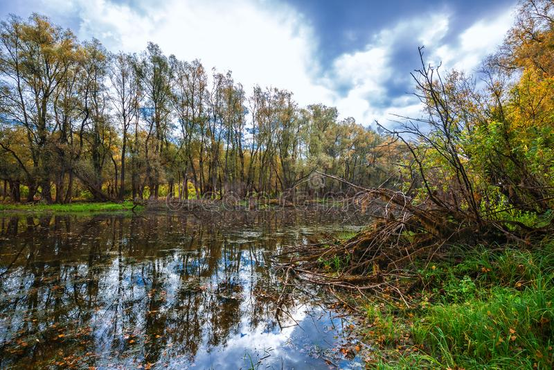 De herfst op rivier Westelijk Siberië royalty-vrije stock fotografie