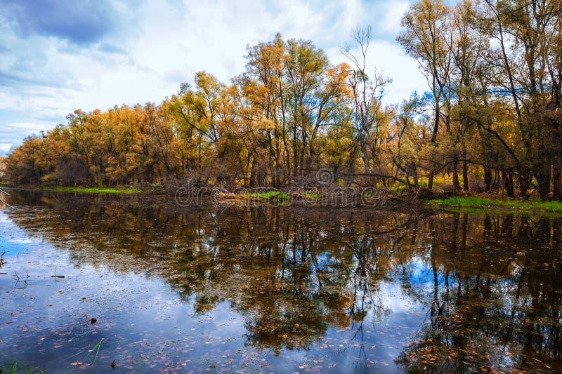 De herfst op rivier Westelijk Siberië stock afbeelding
