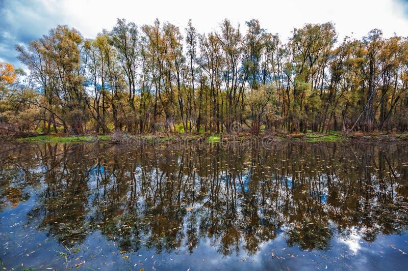 De herfst op rivier Westelijk Siberië royalty-vrije stock afbeelding