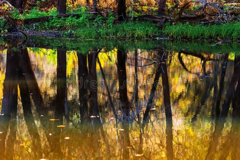 De herfst op rivier Westelijk Siberië royalty-vrije stock afbeeldingen
