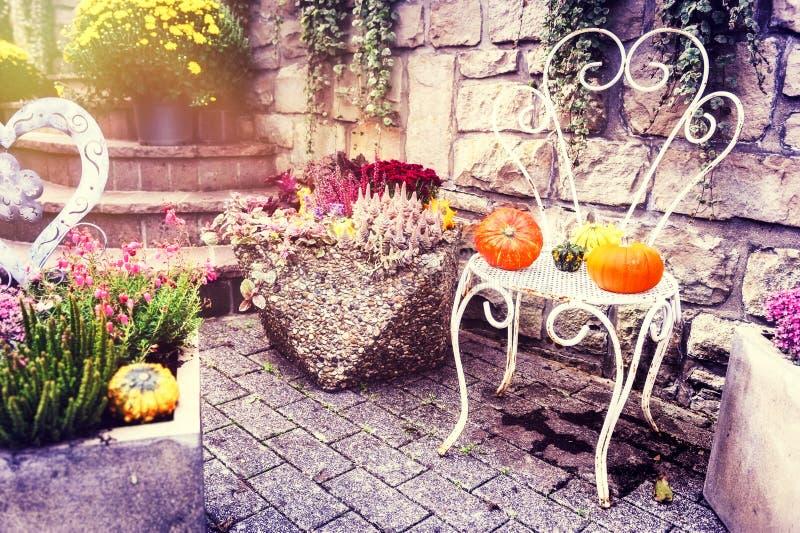 De herfst openluchtdecoratie met kleurrijke pompoenen stock foto's